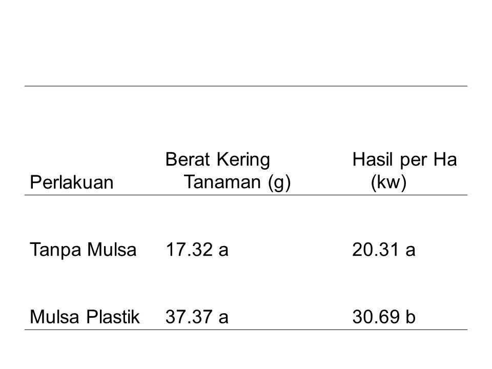 Perlakuan Berat Kering Tanaman (g) Hasil per Ha (kw) Tanpa Mulsa. 17.32 a. 20.31 a. Mulsa Plastik.