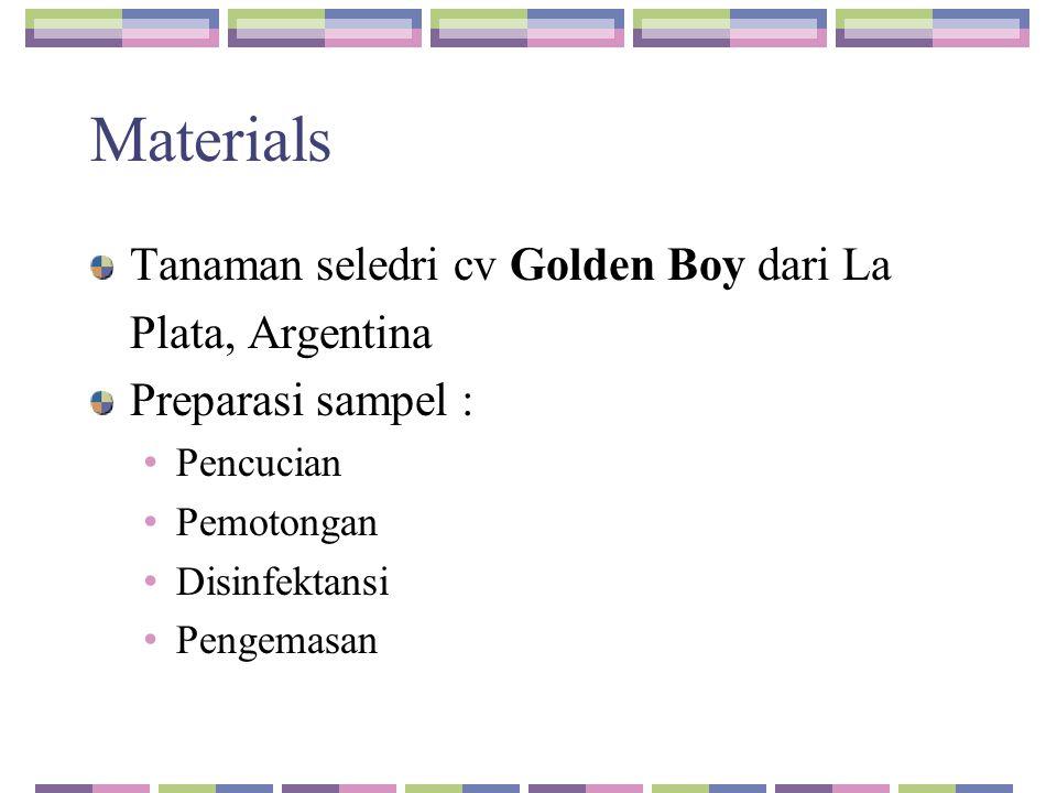 Materials Tanaman seledri cv Golden Boy dari La Plata, Argentina