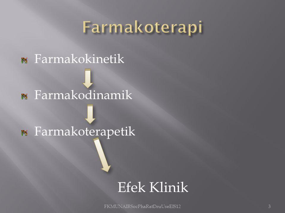 FKMUNAIRSocPhaRatDruUseEIS12