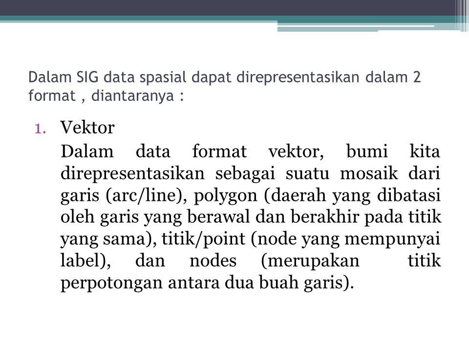 Dalam SIG data spasial dapat direpresentasikan dalam 2 format , diantaranya :