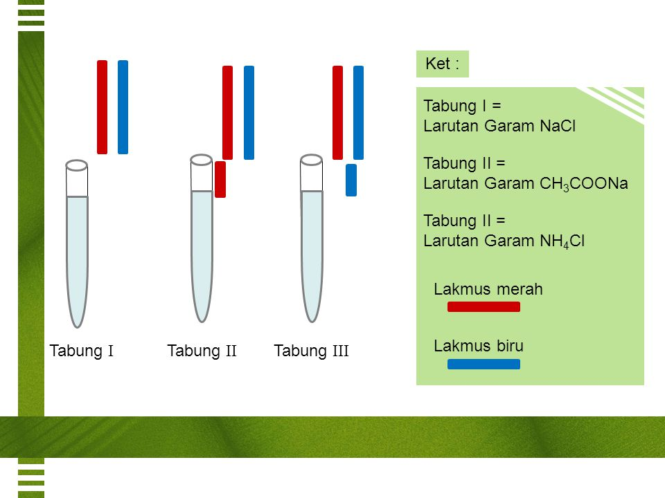 Ket : Tabung I = Larutan Garam NaCl. Tabung II = Larutan Garam CH3COONa. Tabung II = Larutan Garam NH4Cl.