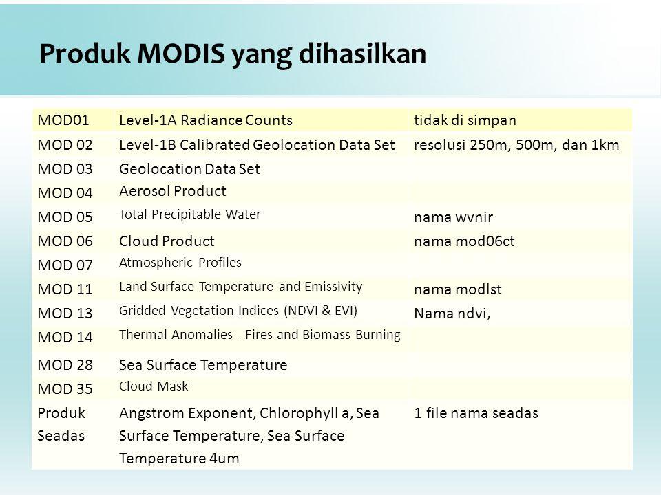 Produk MODIS yang dihasilkan