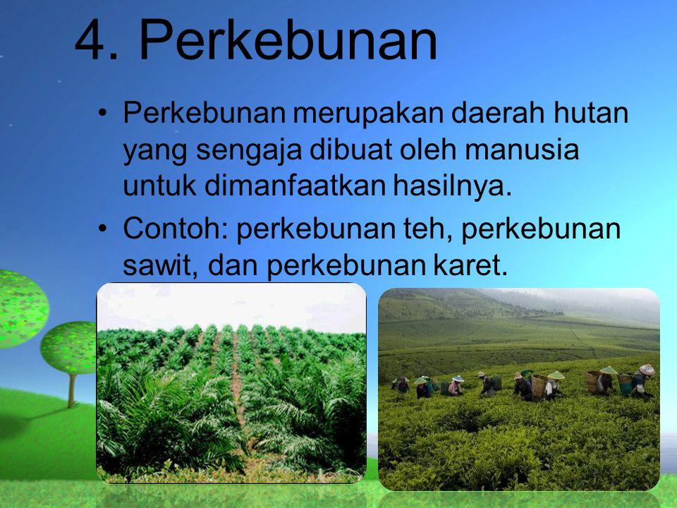 4. Perkebunan Perkebunan merupakan daerah hutan yang sengaja dibuat oleh manusia untuk dimanfaatkan hasilnya.