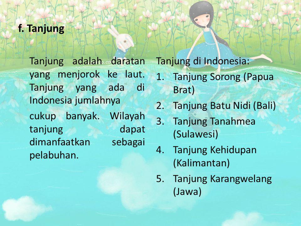 f. Tanjung