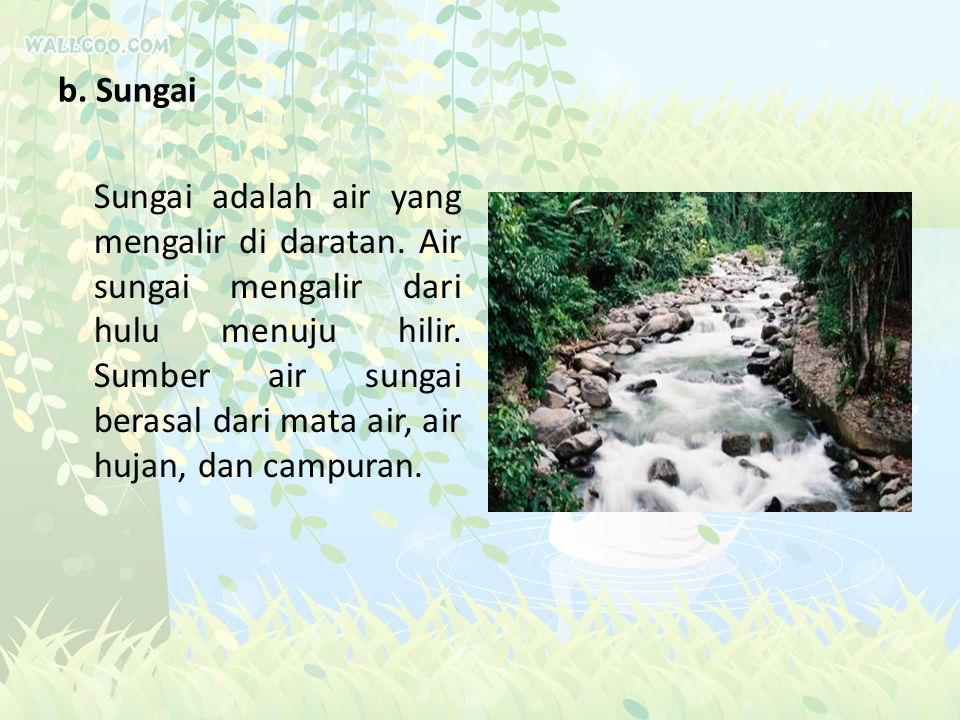 b. Sungai