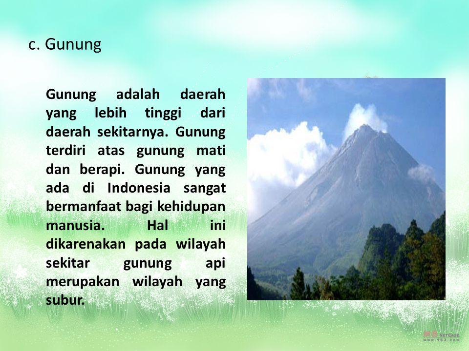 c. Gunung