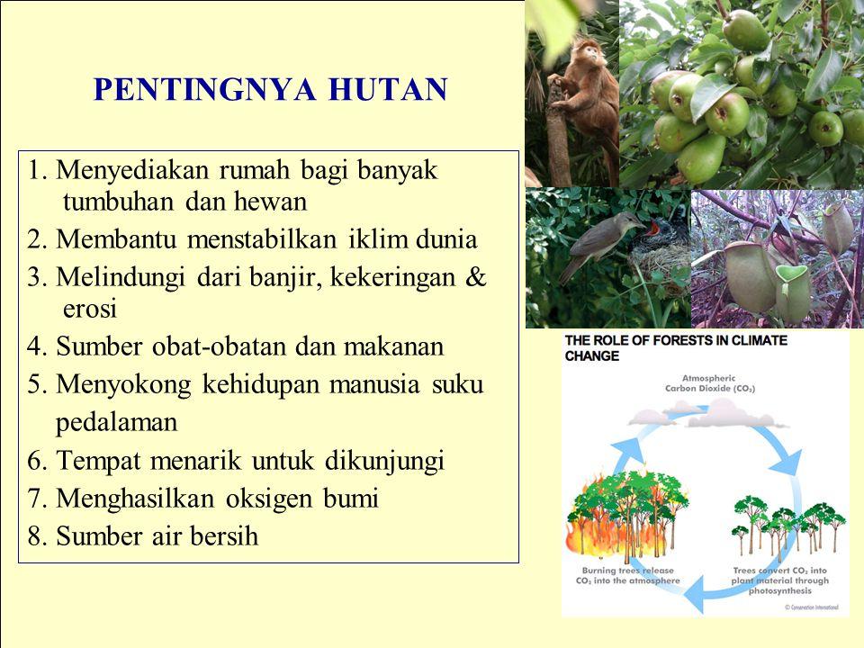 PENTINGNYA HUTAN 1. Menyediakan rumah bagi banyak tumbuhan dan hewan