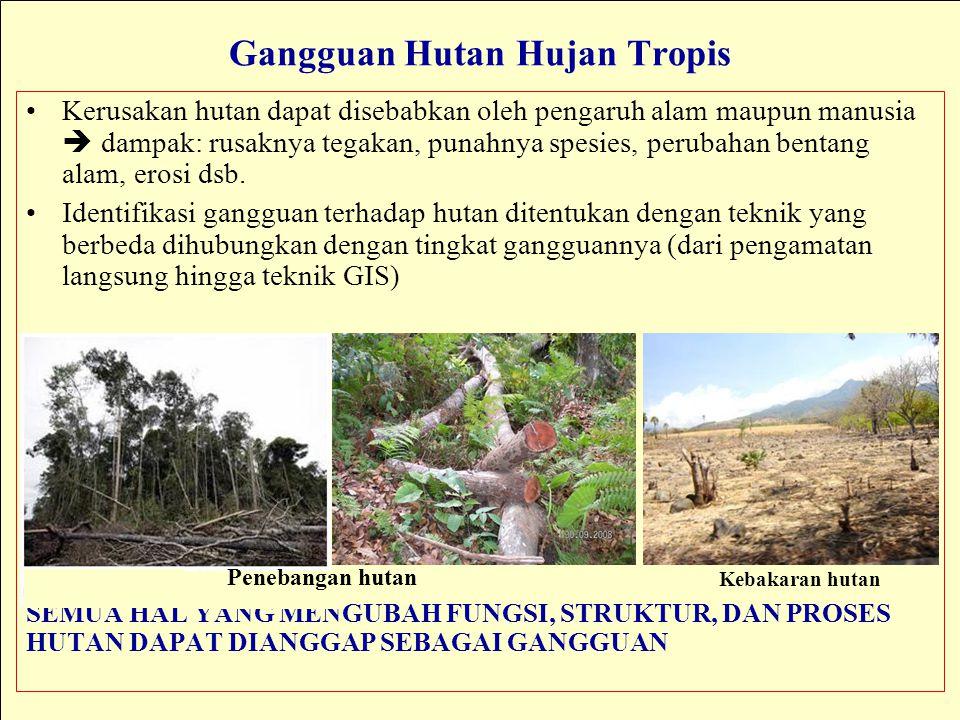 Gangguan Hutan Hujan Tropis