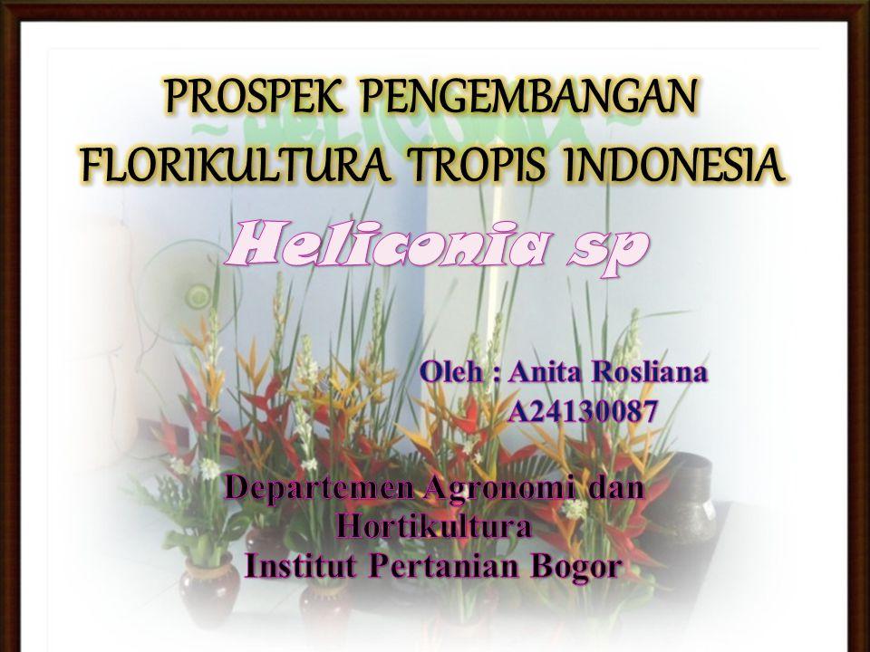PROSPEK PENGEMBANGAN FLORIKULTURA TROPIS INDONESIA