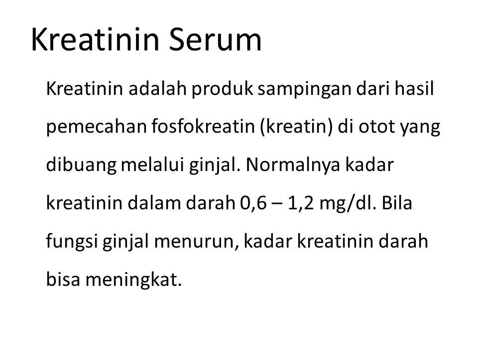 Kreatinin Serum