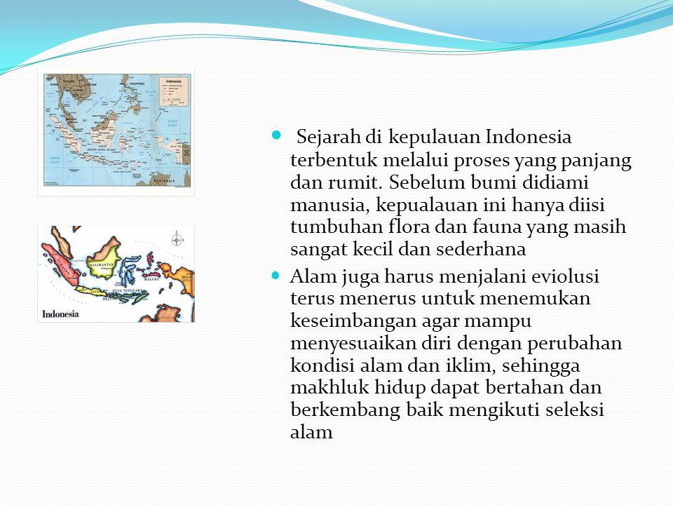Sejarah di kepulauan Indonesia terbentuk melalui proses yang panjang dan rumit. Sebelum bumi didiami manusia, kepualauan ini hanya diisi tumbuhan flora dan fauna yang masih sangat kecil dan sederhana