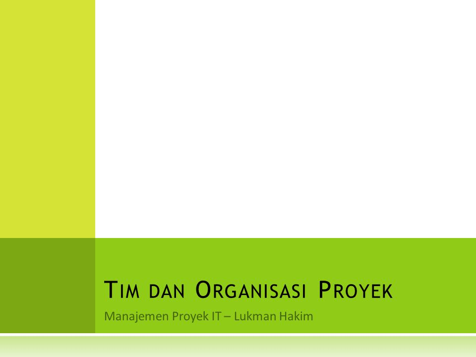 Tim dan Organisasi Proyek