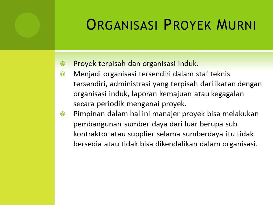 Organisasi Proyek Murni