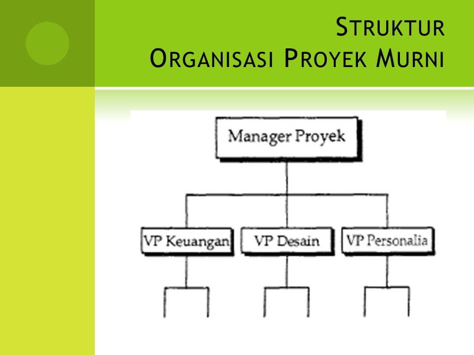 Struktur Organisasi Proyek Murni
