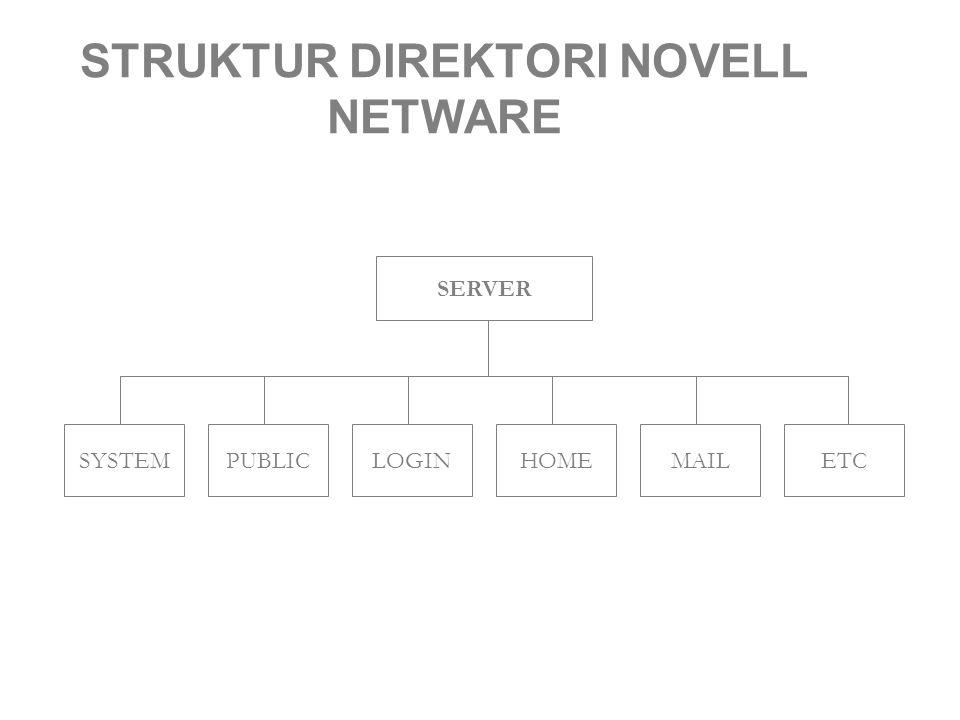 STRUKTUR DIREKTORI NOVELL NETWARE