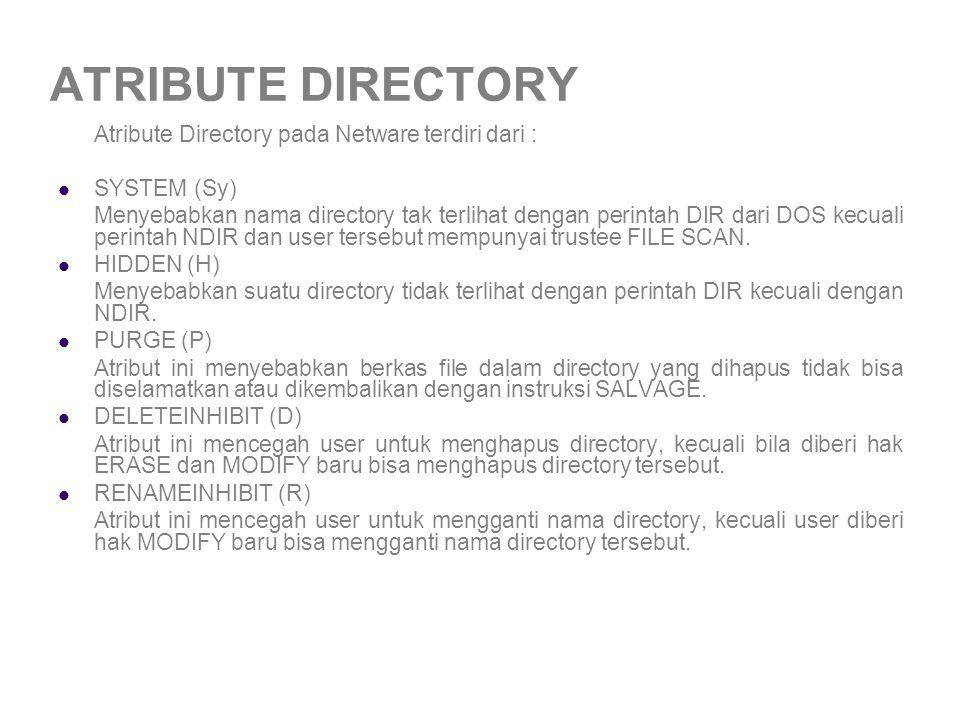 ATRIBUTE DIRECTORY Atribute Directory pada Netware terdiri dari :