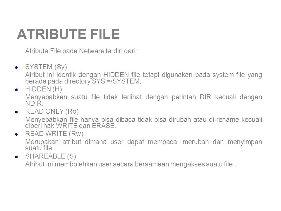 ATRIBUTE FILE SYSTEM (Sy)