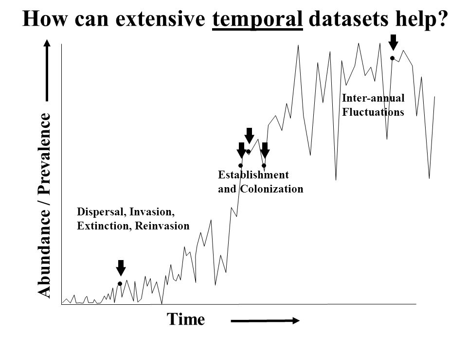 How can extensive temporal datasets help