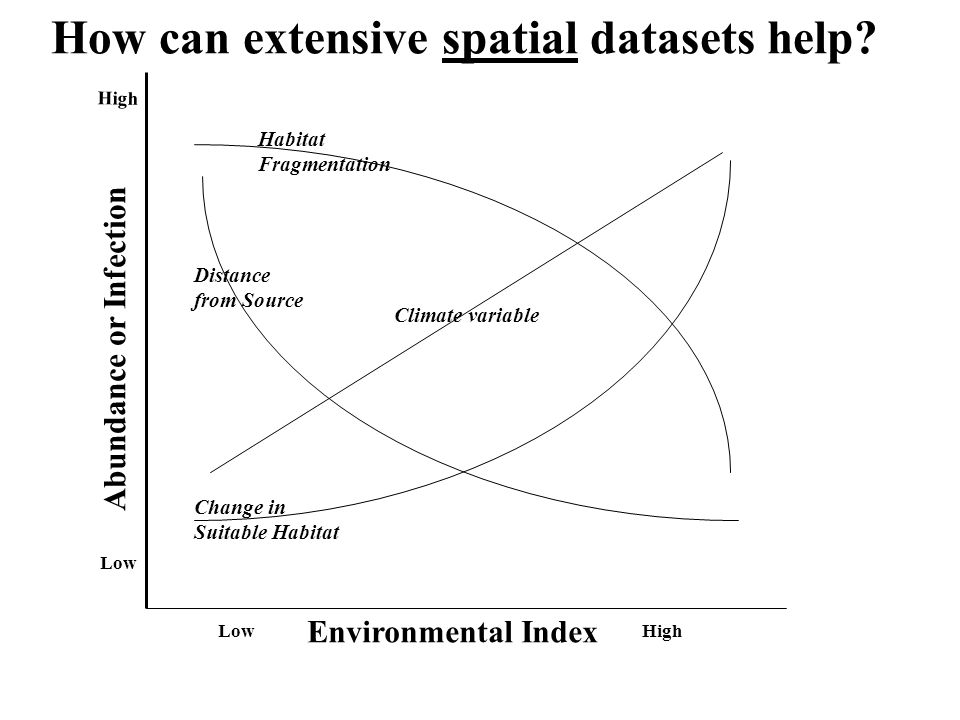 How can extensive spatial datasets help