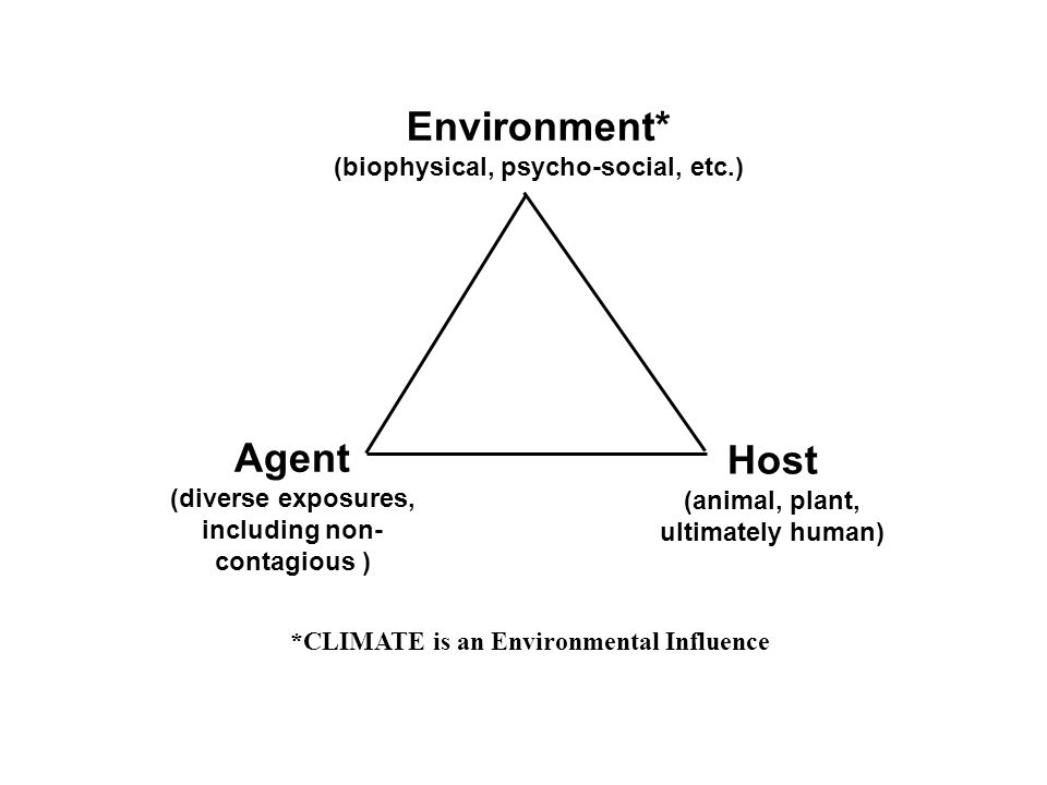 Environment* Agent Host
