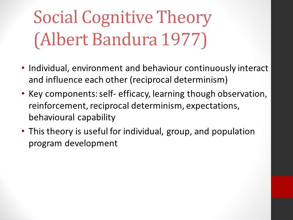 Social Cognitive Theory (Albert Bandura 1977)