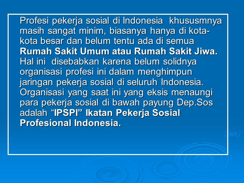 Profesi pekerja sosial di Indonesia khususmnya masih sangat minim, biasanya hanya di kota-kota besar dan belum tentu ada di semua Rumah Sakit Umum atau Rumah Sakit Jiwa.