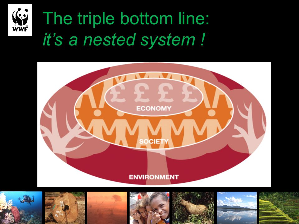 The triple bottom line:
