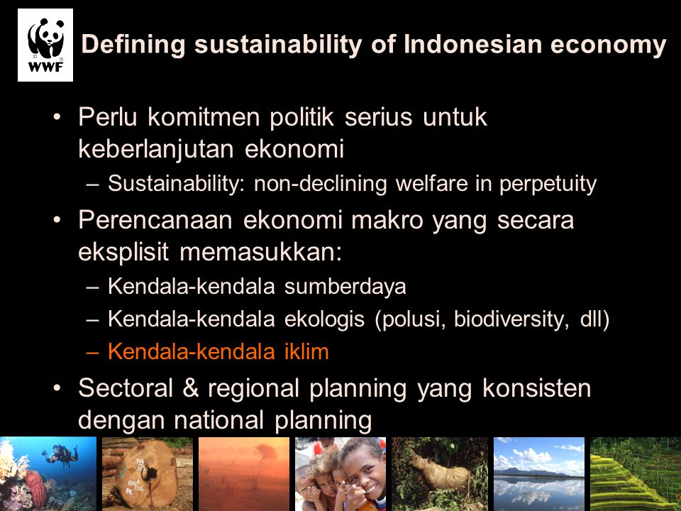 Defining sustainability of Indonesian economy