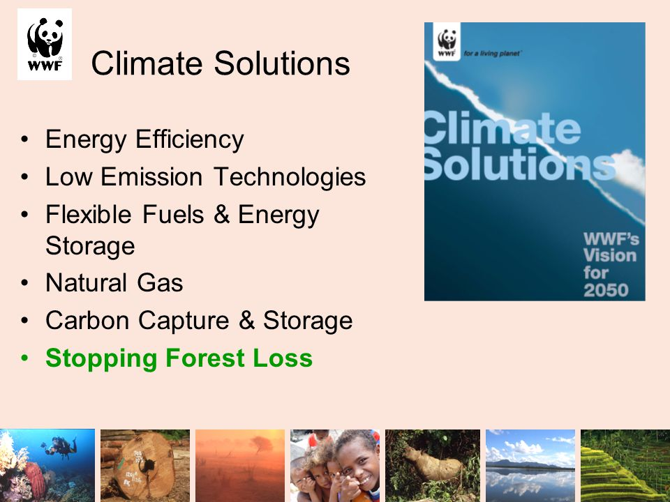 Climate Solutions Energy Efficiency Low Emission Technologies