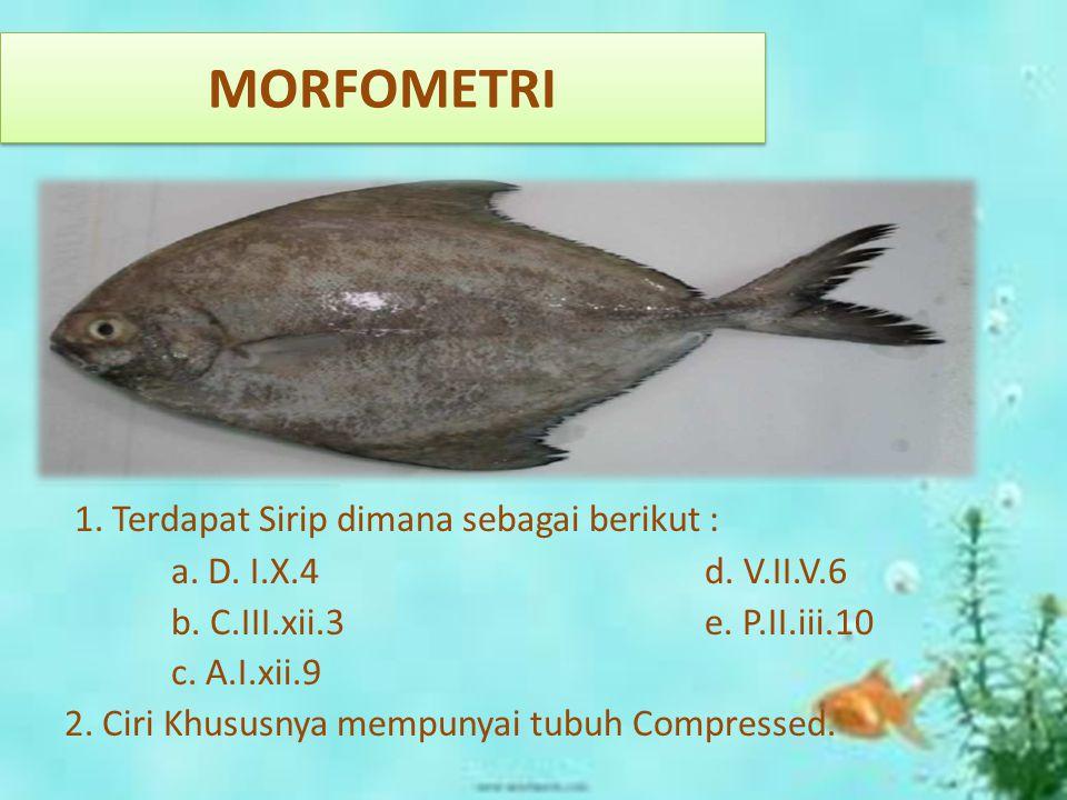 MORFOMETRI 1. Terdapat Sirip dimana sebagai berikut :