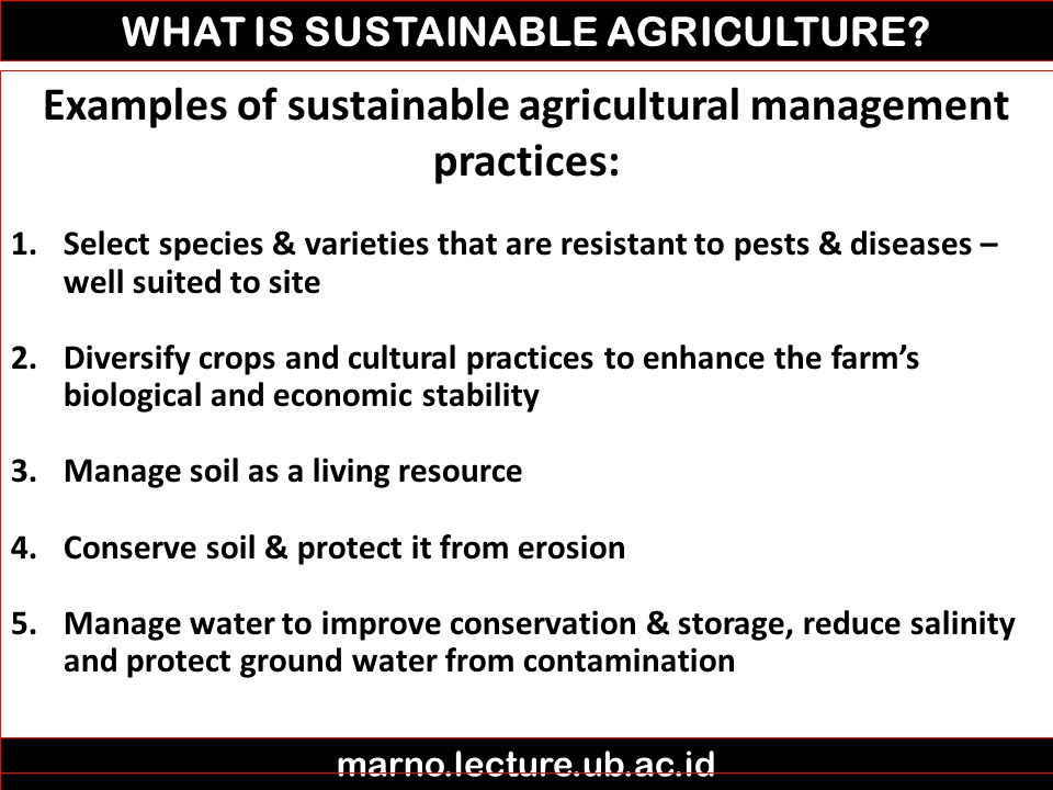 Examples of sustainable agricultural management practices: