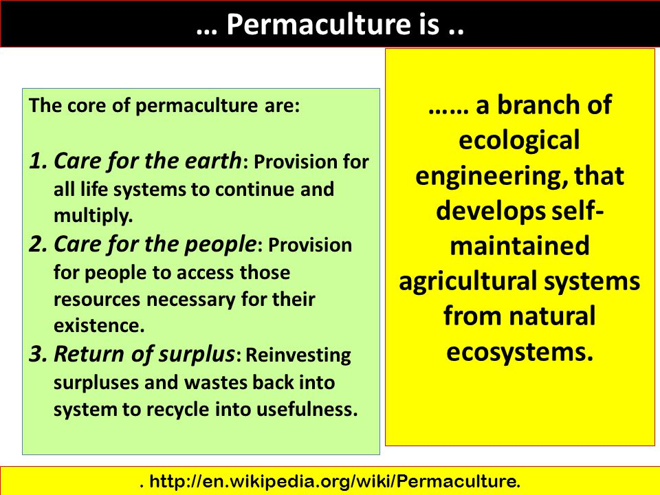 . http://en.wikipedia.org/wiki/Permaculture.