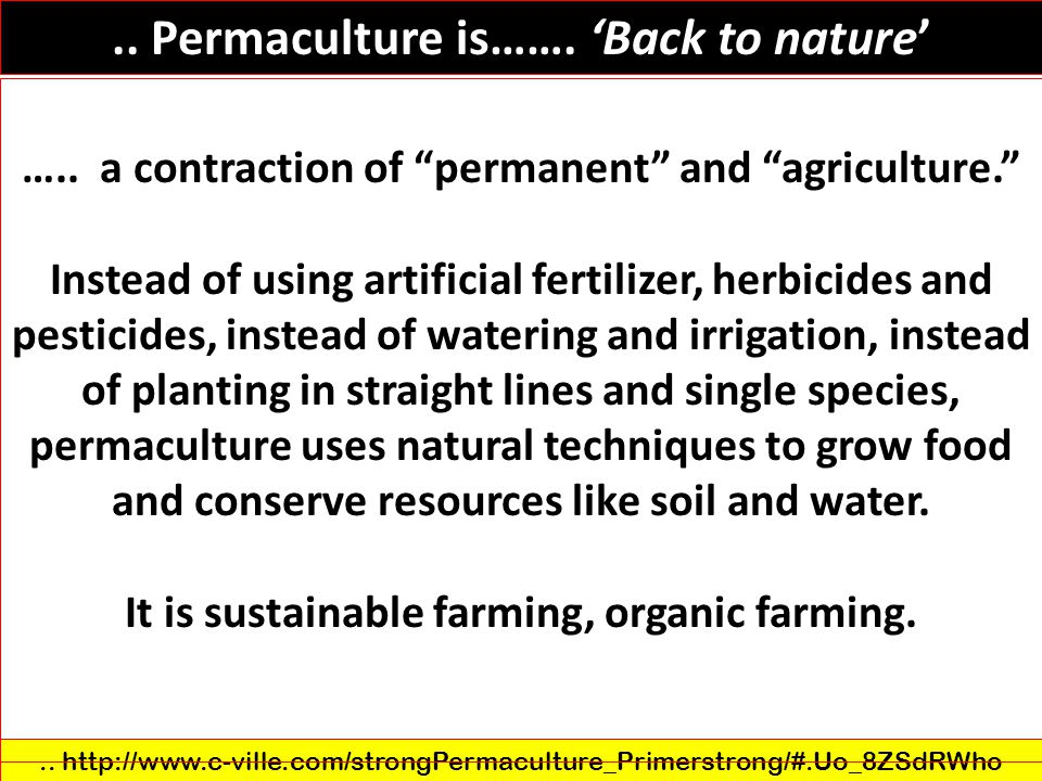 .. Permaculture is……. 'Back to nature'