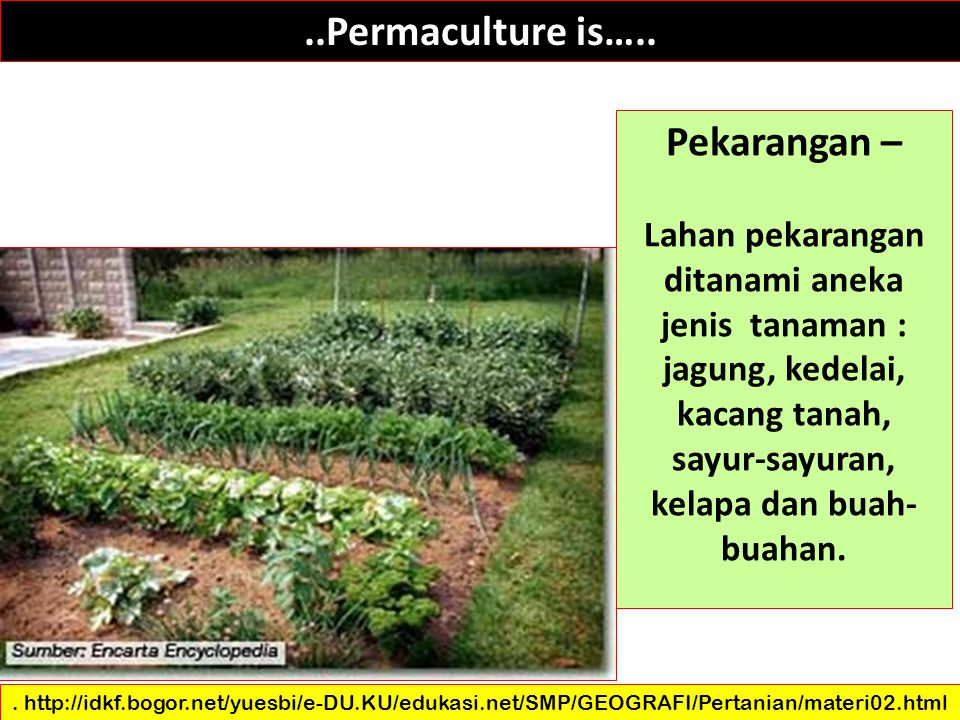 ..Permaculture is….. Pekarangan –