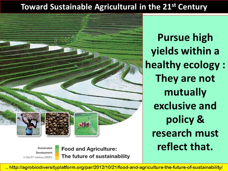 Pursue high yields within a healthy ecology :