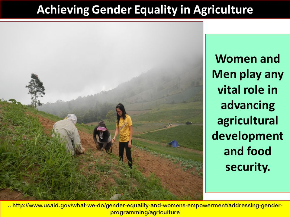 Achieving Gender Equality in Agriculture
