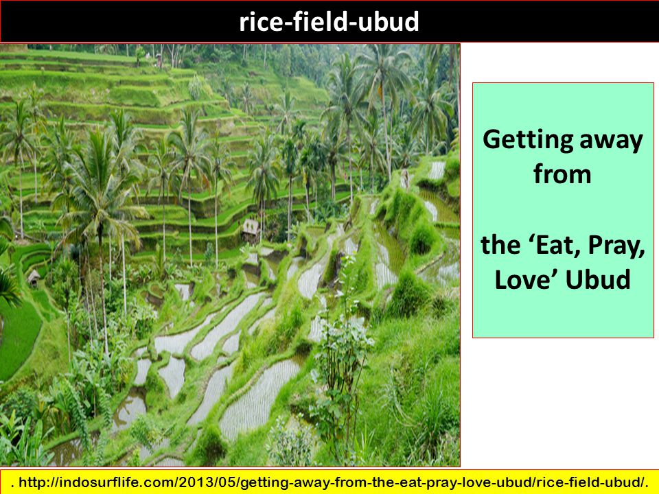 the 'Eat, Pray, Love' Ubud