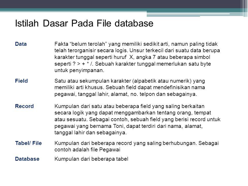 Istilah Dasar Pada File database