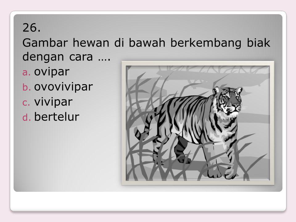 26. Gambar hewan di bawah berkembang biak dengan cara …. ovipar ovovivipar vivipar bertelur
