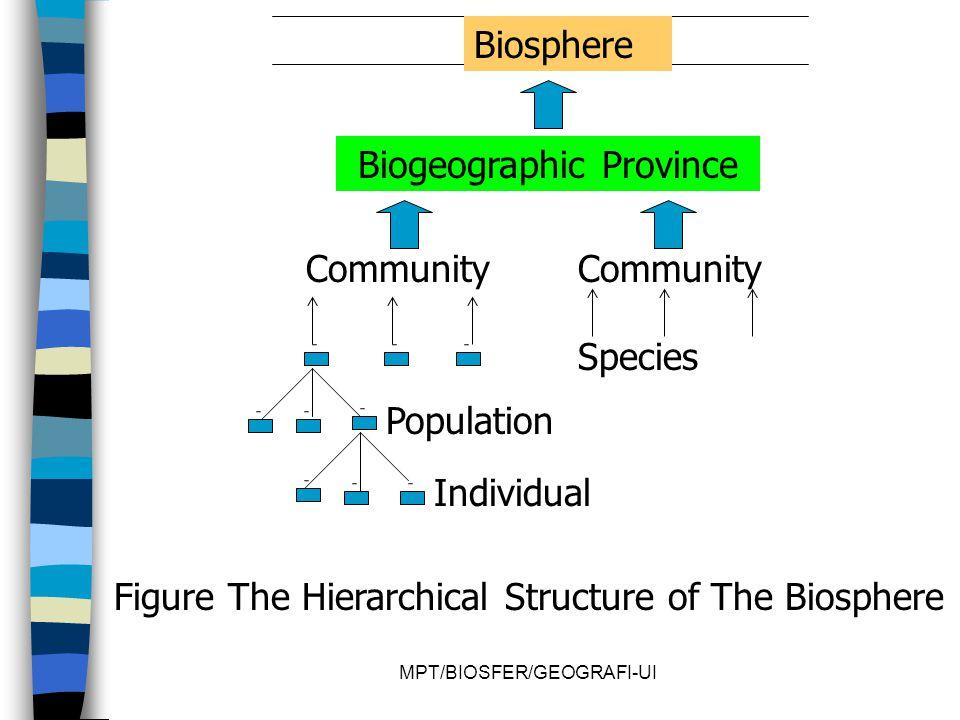 Biogeographic Province