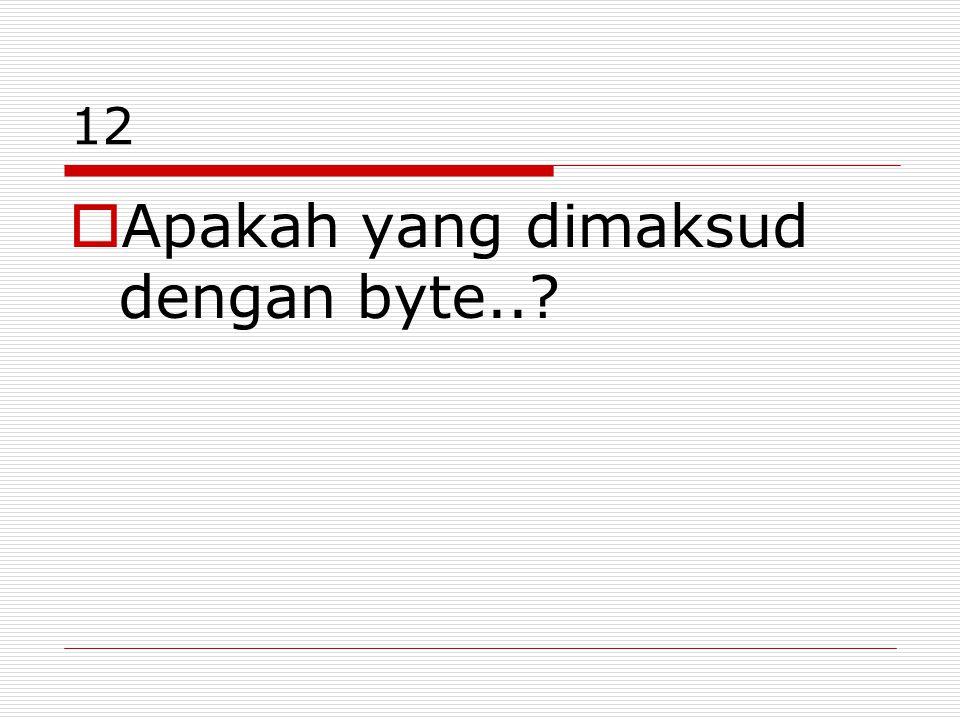 Apakah yang dimaksud dengan byte..