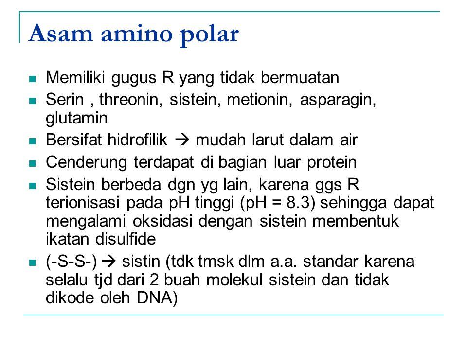 Asam amino polar Memiliki gugus R yang tidak bermuatan