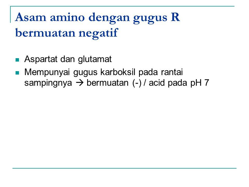 Asam amino dengan gugus R bermuatan negatif