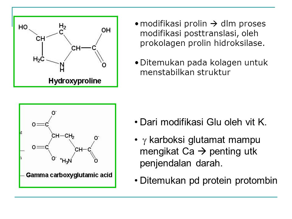 Dari modifikasi Glu oleh vit K.