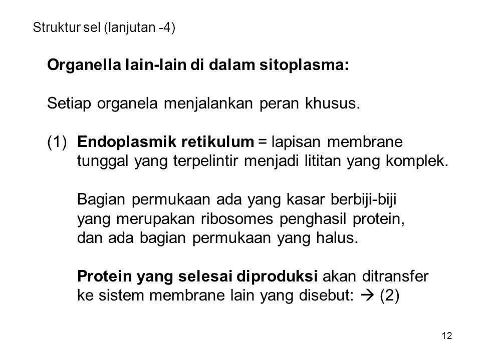 Struktur sel (lanjutan -4)