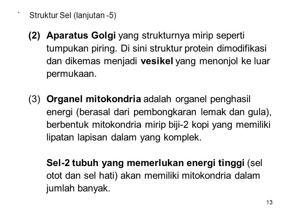 ` Struktur Sel (lanjutan -5)