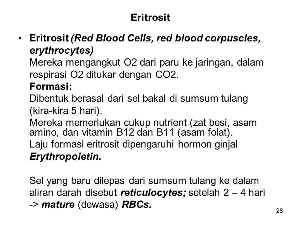 Eritrosit Eritrosit (Red Blood Cells, red blood corpuscles, erythrocytes) Mereka mengangkut O2 dari paru ke jaringan, dalam.