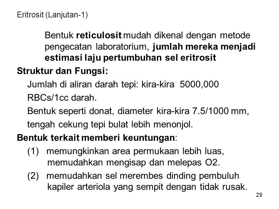 Eritrosit (Lanjutan-1)