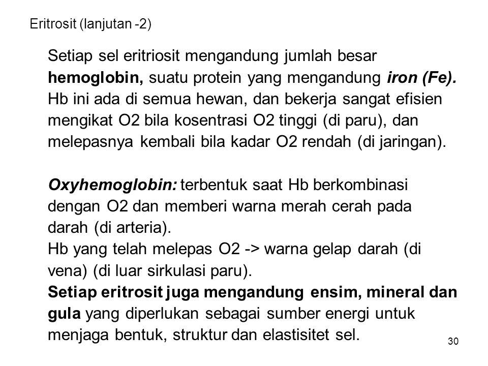 Eritrosit (lanjutan -2)