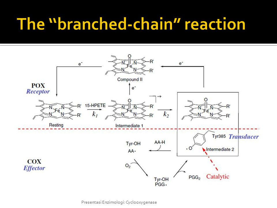 The ''branched-chain reaction